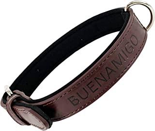 Collar perro con hebilla