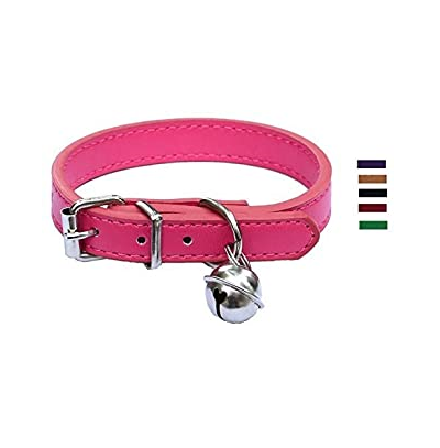 Collar rosa para cachorros